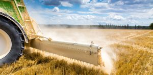 Zno for agriculture